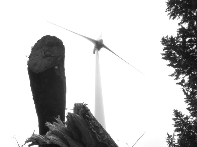 wind turbine. st. petersburg. black forest region